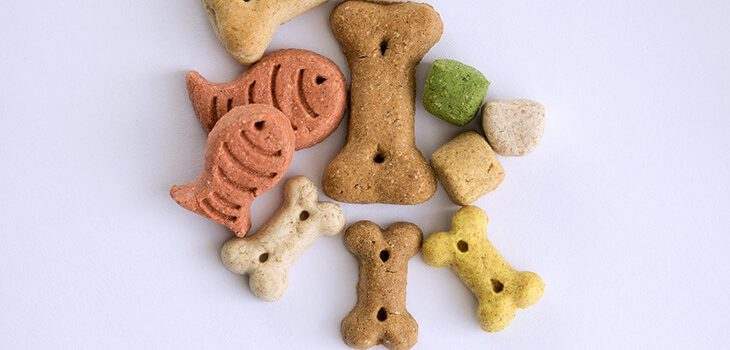 15 Easy Homemade Dog Treat Recipes
