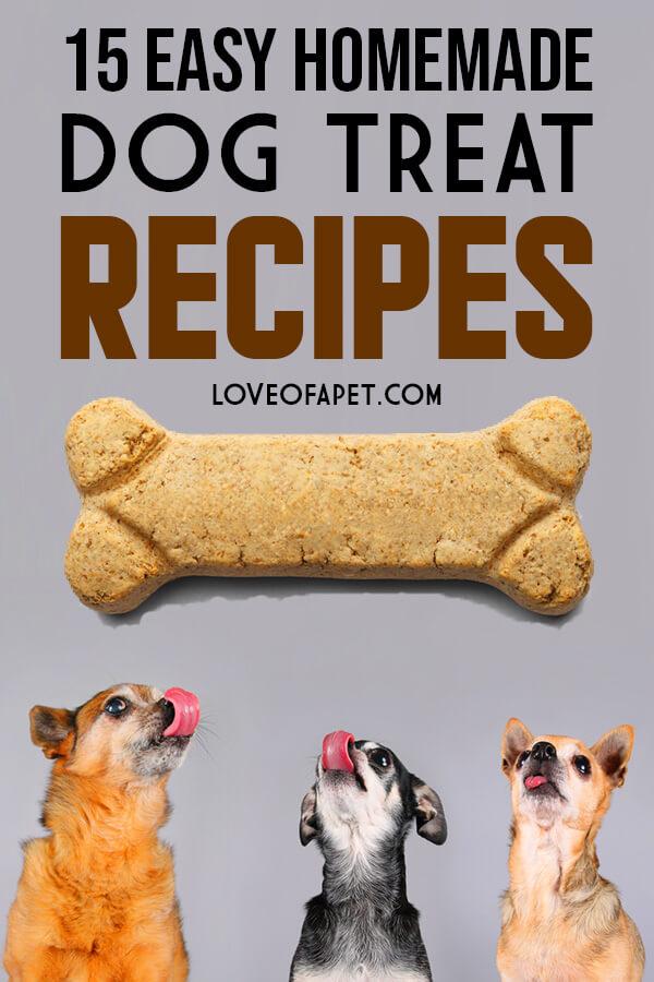 15 Easy Homemade Dog Treat Recipes