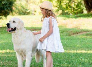 8 Fun Games Kids Can Play With Dogs
