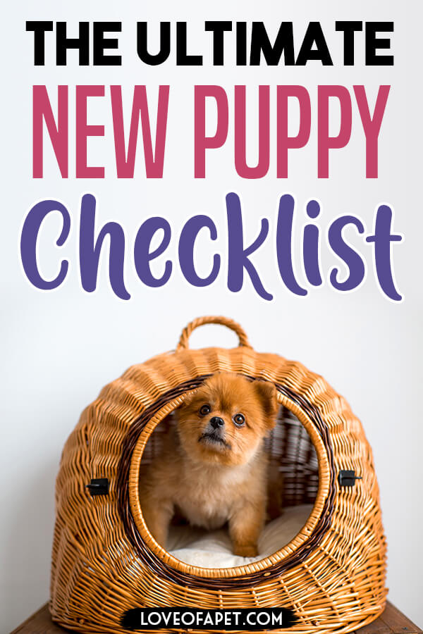 What Do You Need for a New Puppy