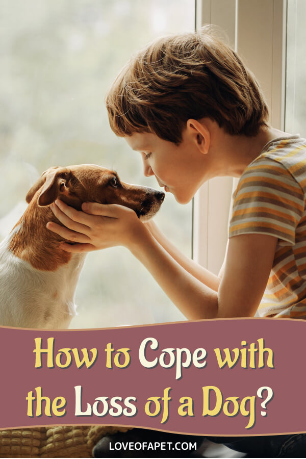 7 Ways to Cope With the Loss of a Pet
