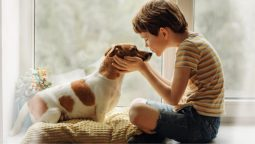 How to Cope with the Loss of a Dog?