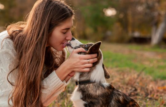 10 Intriguing Facts About Dog Kisses You Never Knew