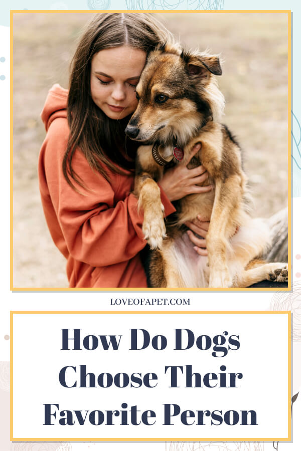 How Do Dogs Choose Their Favorite Person