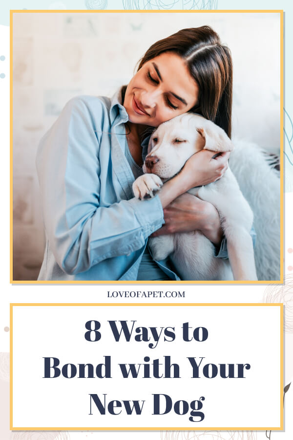 How to Bond with Your New Dog in 8 Easy Steps