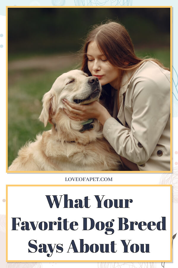 What Your Favorite Dog Breed Says About You